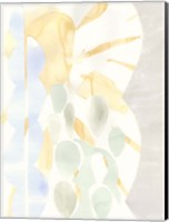 Framed Painted Desert II