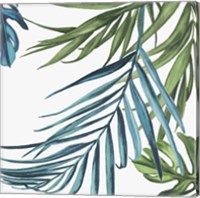 Framed Palm Leaves III