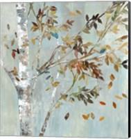 Framed Birch with Leaves I