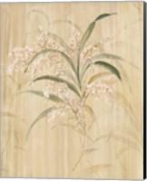 Framed Bamboo Blossoms