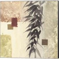 Framed Textured Bamboo II