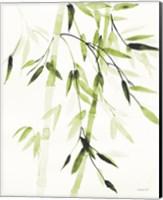 Framed Bamboo Leaves V Green