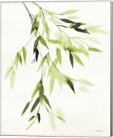 Framed Bamboo Leaves IV Green