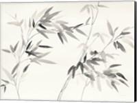 Framed Bamboo Leaves I