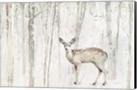 Framed Woodland Walk VII
