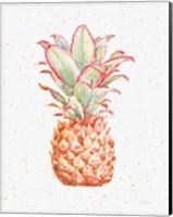 Framed Gracefully Blush Pineapple XI