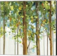 Framed Forest Study IX