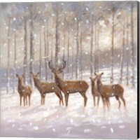 Framed Snow Family