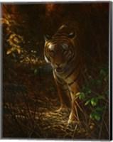 Framed Tiger Odyssey