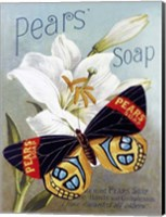 Framed Pears' soap