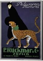 Framed P. Ruckmar & Co.