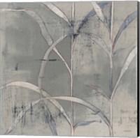 Framed In the Garden III Gray