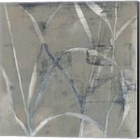 Framed In the Garden II Gray