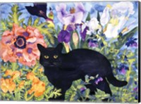 Framed Black Cat Magic