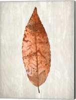 Framed Copper Leaves 1