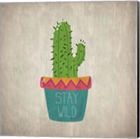 Framed Wild Cactus 1