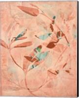 Framed Folia