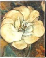 Framed Cream Flower 2