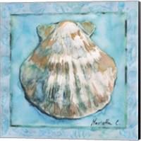 Framed Shell 1