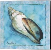 Framed Shell 2