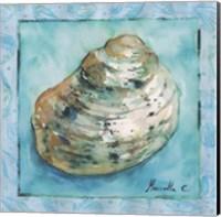 Framed Shell 4