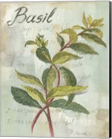 Framed Basil