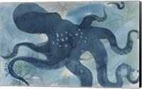 Framed Octopus III