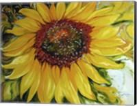 Framed Sundown Sunflower