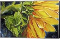 Framed Sunflower Abstract
