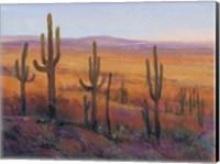 Framed Desert Light I
