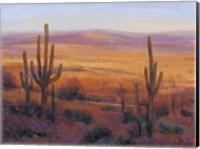 Framed Desert Light II