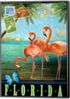 Framed Florida Flamingoes