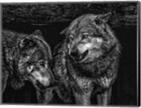 Framed Wolfpack Black & White