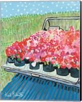 Framed June Blooms