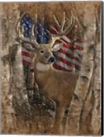 Framed Whitetail Buck America