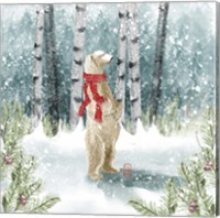 Framed Snow Polar Bear