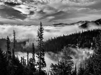 Framed Olympic National Park, Washington (BW)