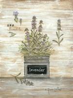 Framed Lavender Botanical