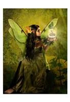 Framed Fairy 16