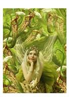 Framed Fairy 22