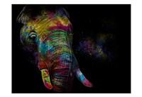Framed Kaleidoscope Elephant