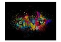 Framed Kaleidoscope Eyes