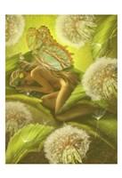 Framed Nature Fairy