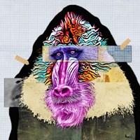 Framed Baboon