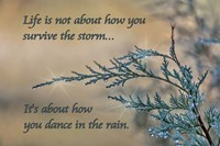 Framed Dance in the Rain