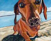 Framed Sand Dog