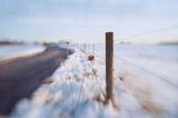 Framed Walking on the Edge of Winter