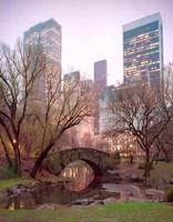 Framed Central Park, NYC