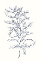 Framed Indigo Botany Study II