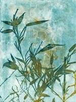 Framed Leafy Bamboo